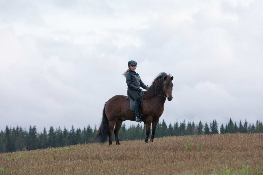 Woman sitting on the Icelandic horse and Horse Riding in Iceland