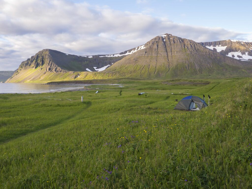Camping in Hornstrandir Nature Reserven in the Westfjords of Iceland