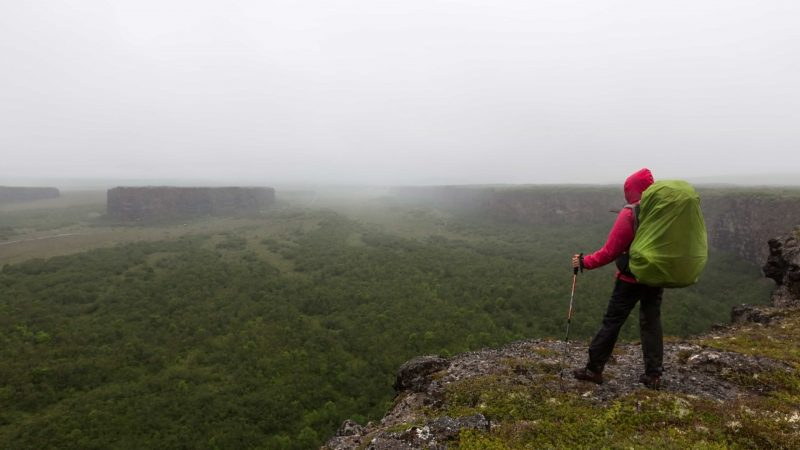 Man Hiking in Ásbyrgi canyon in north Iceland