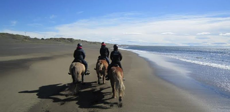 Black Beach Horse Riding tour in Iceland