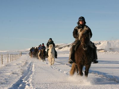 winter horse riding in Iceland