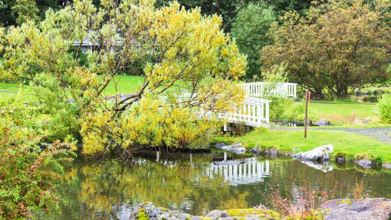 Reykjavik botanical garden in Laugardalur