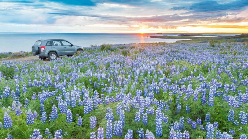 Summer Road Trip in Iceland in July in the midnight sun