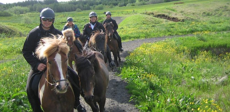 family horse riding tour in Iceland