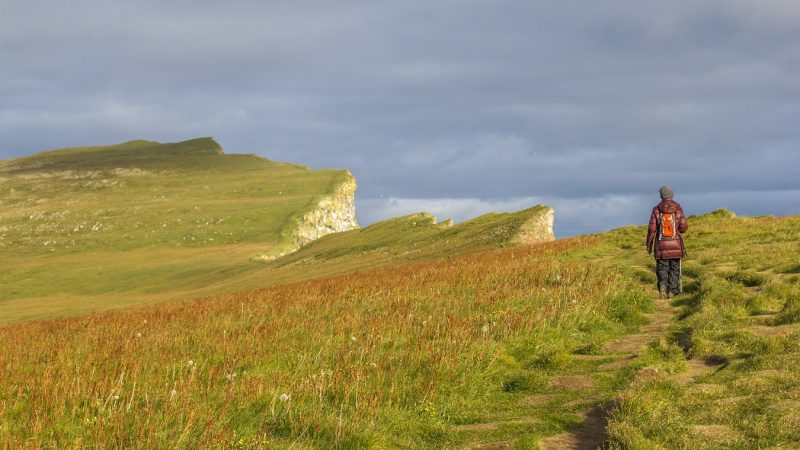 Látrabjarg cliffs in the Westfjords of Iceland, Westernmost part of Iceland