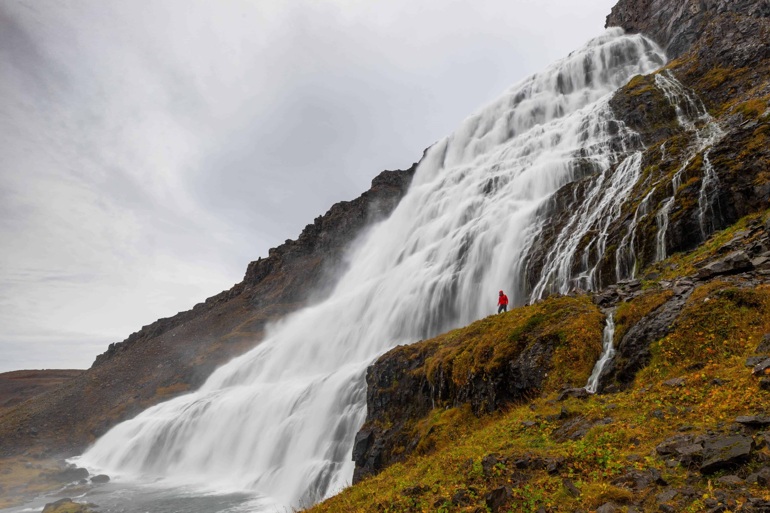 man standing in front of Dynjandi waterfall in the Westfjords