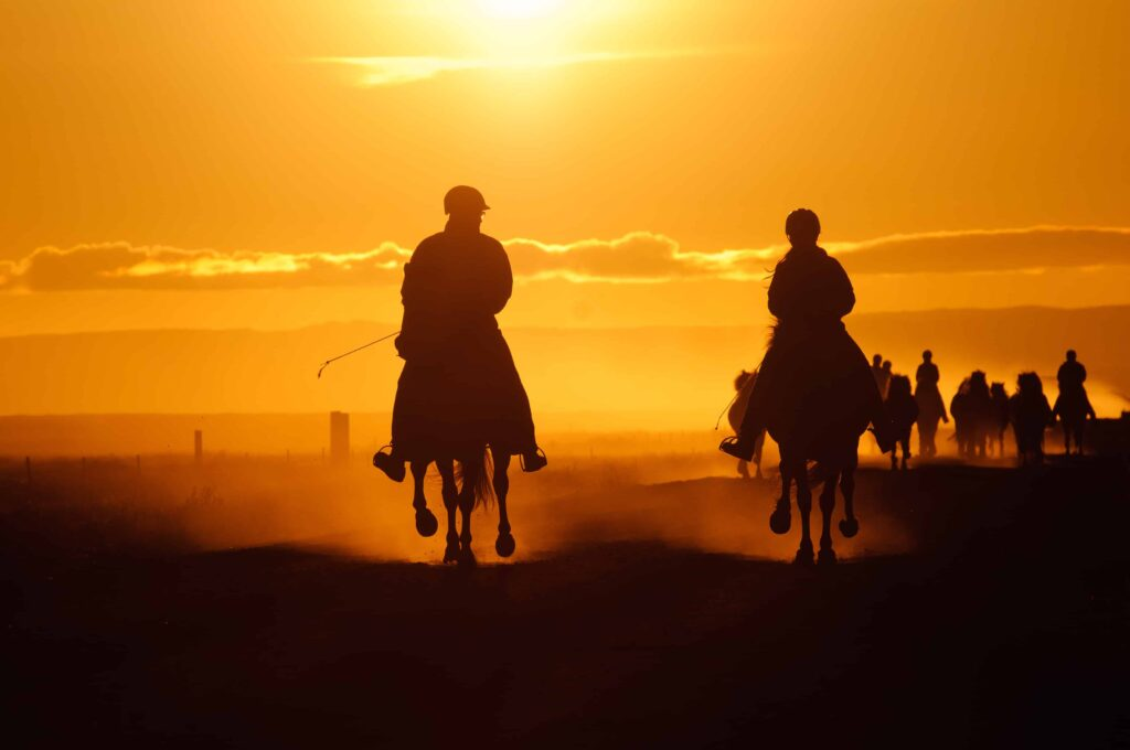Horse Riding in the sunset in Iceland