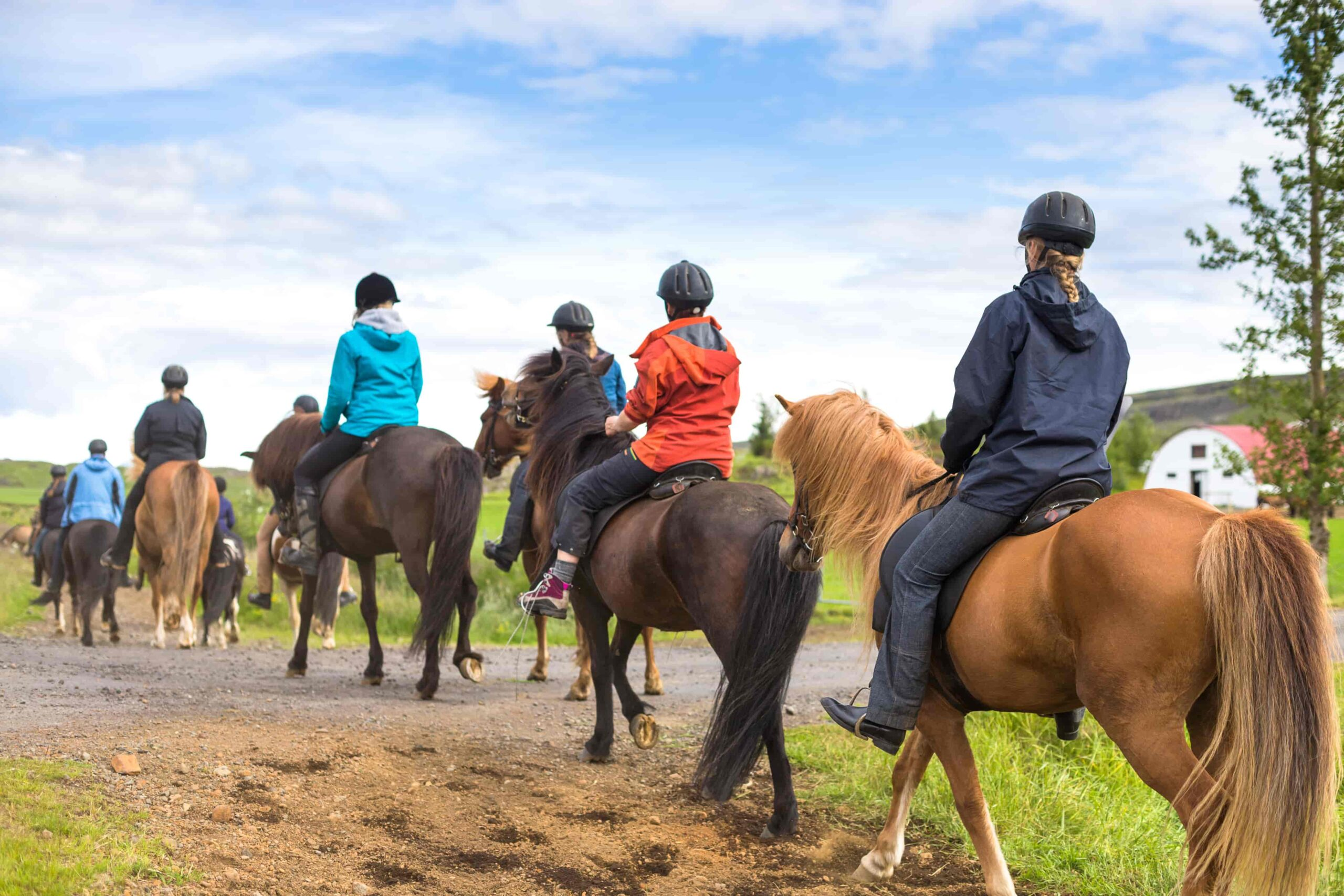 horse riding in iceland
