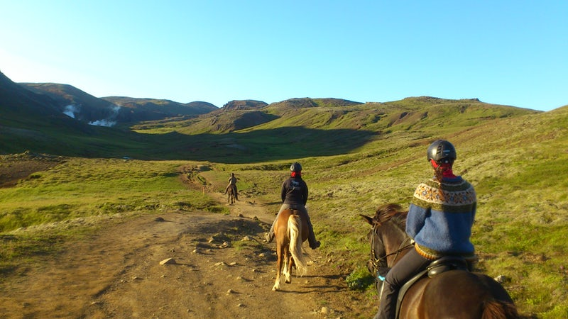 family horse riding tour in south Iceland