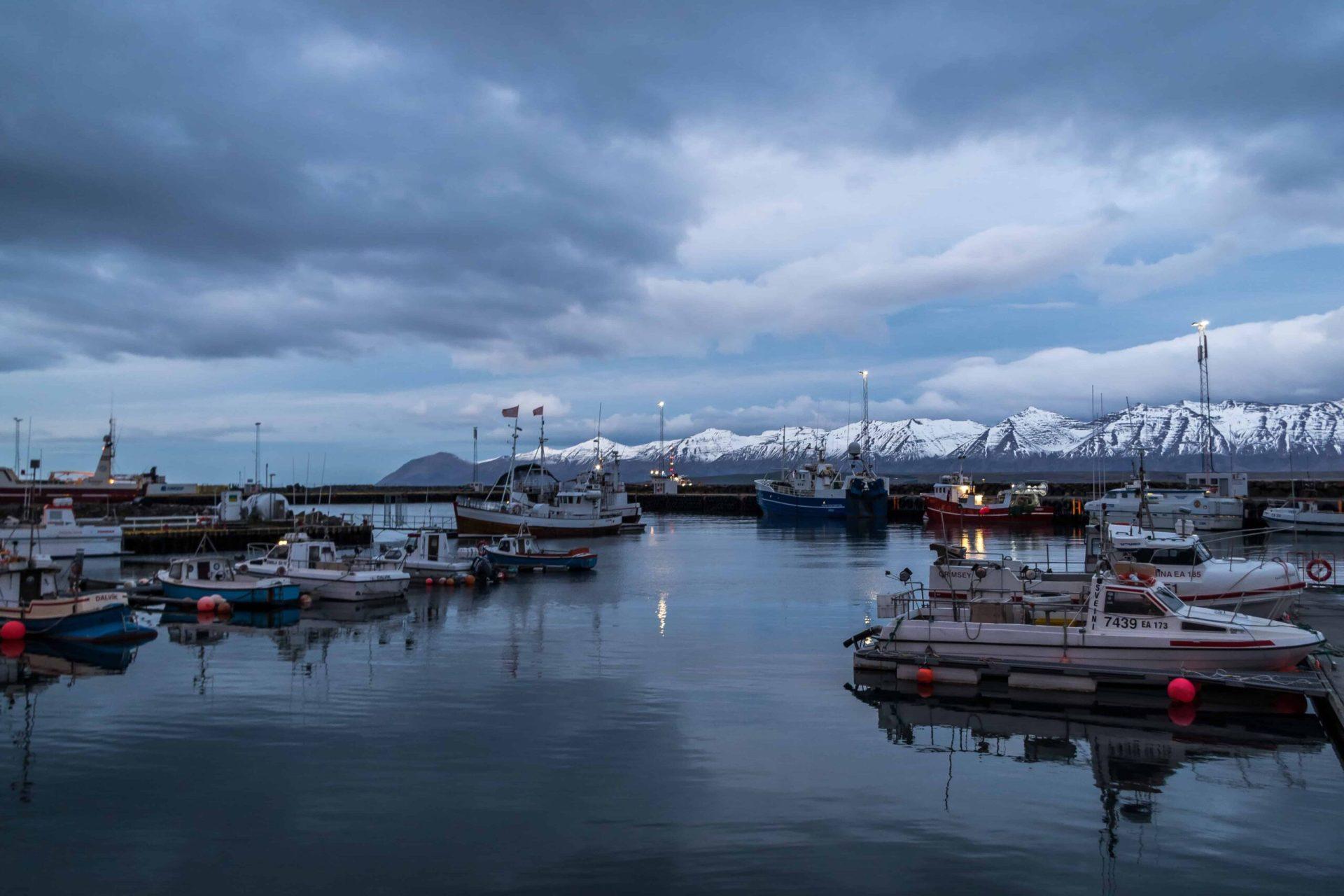 the harbor in Dalvík village in north Iceland