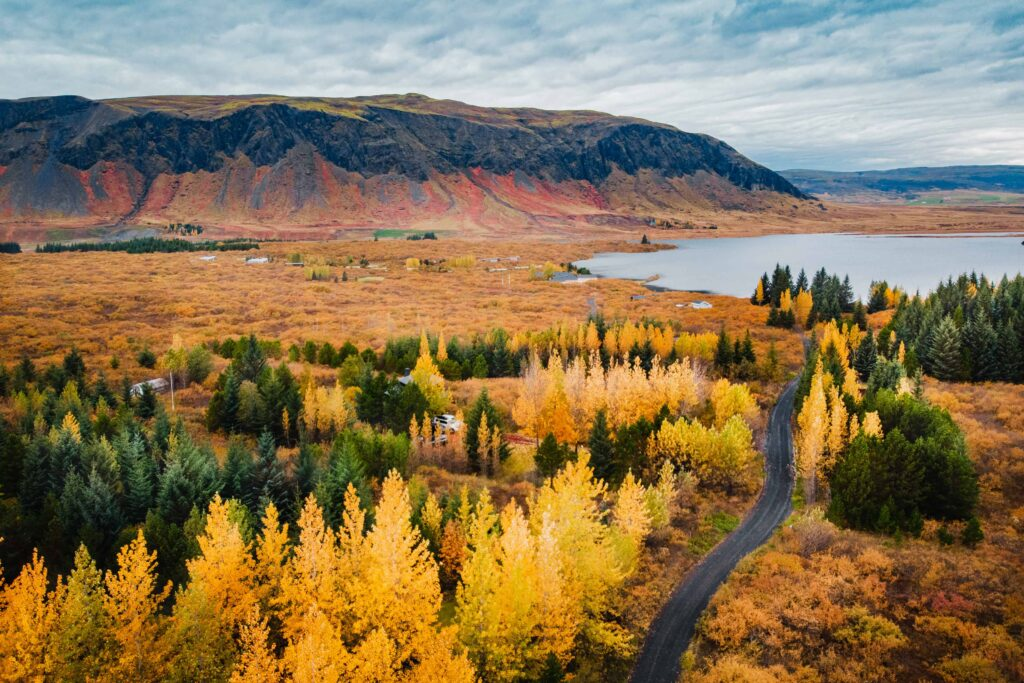 Drone flying in Iceland, Thingvellir National Park in autumn