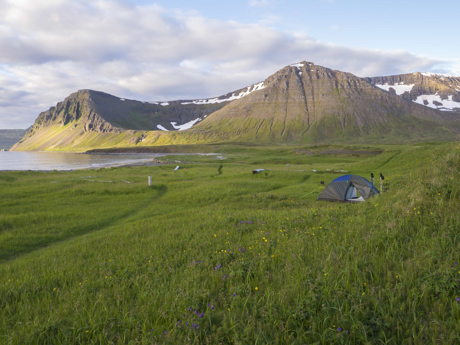 Camping in Hornstrandir Nature Reserven in the Westfjords of Iceland