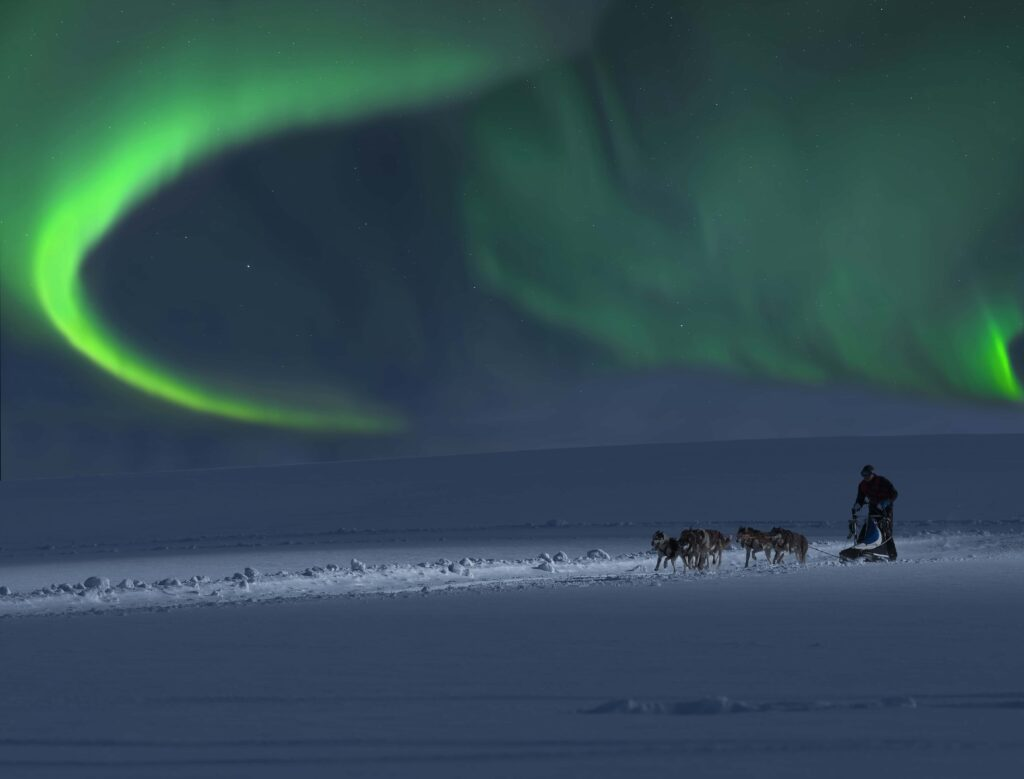 Dog Sledding under the northern lights in Iceland