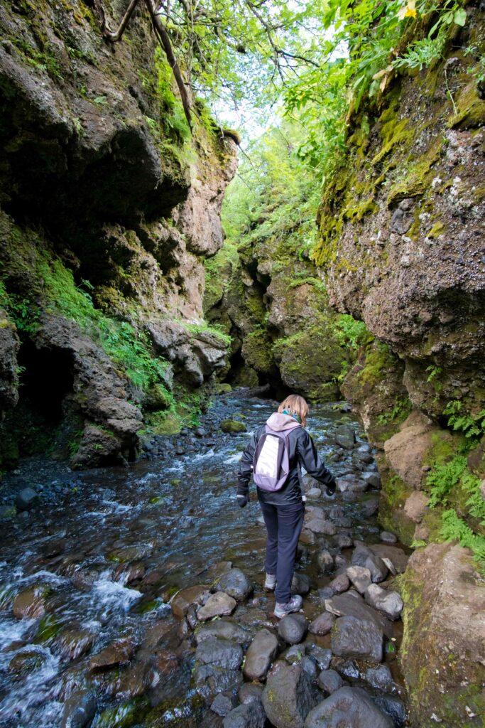 Nauthúsagil ravine in the highlands of Iceland