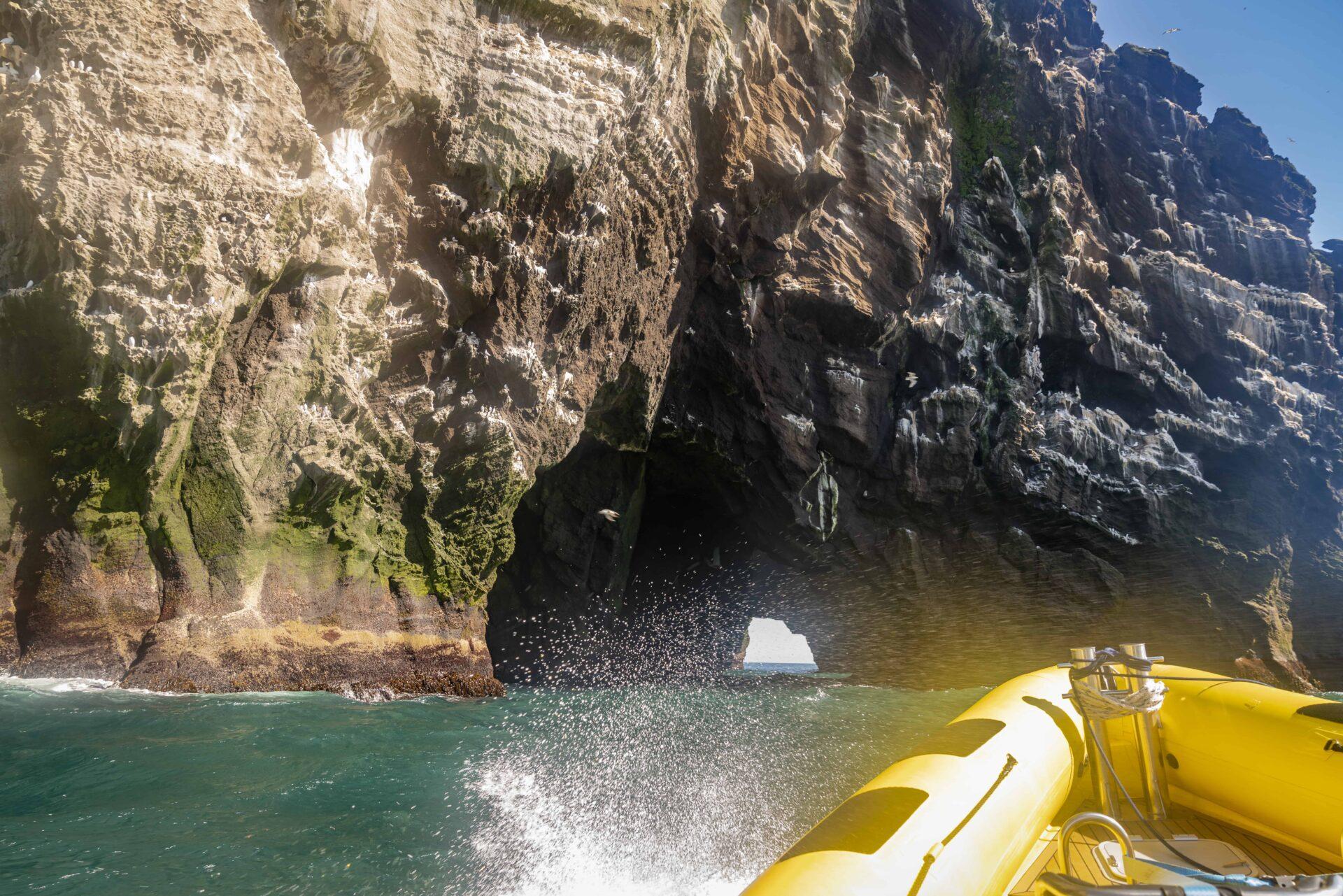boat tour in Westman Islands