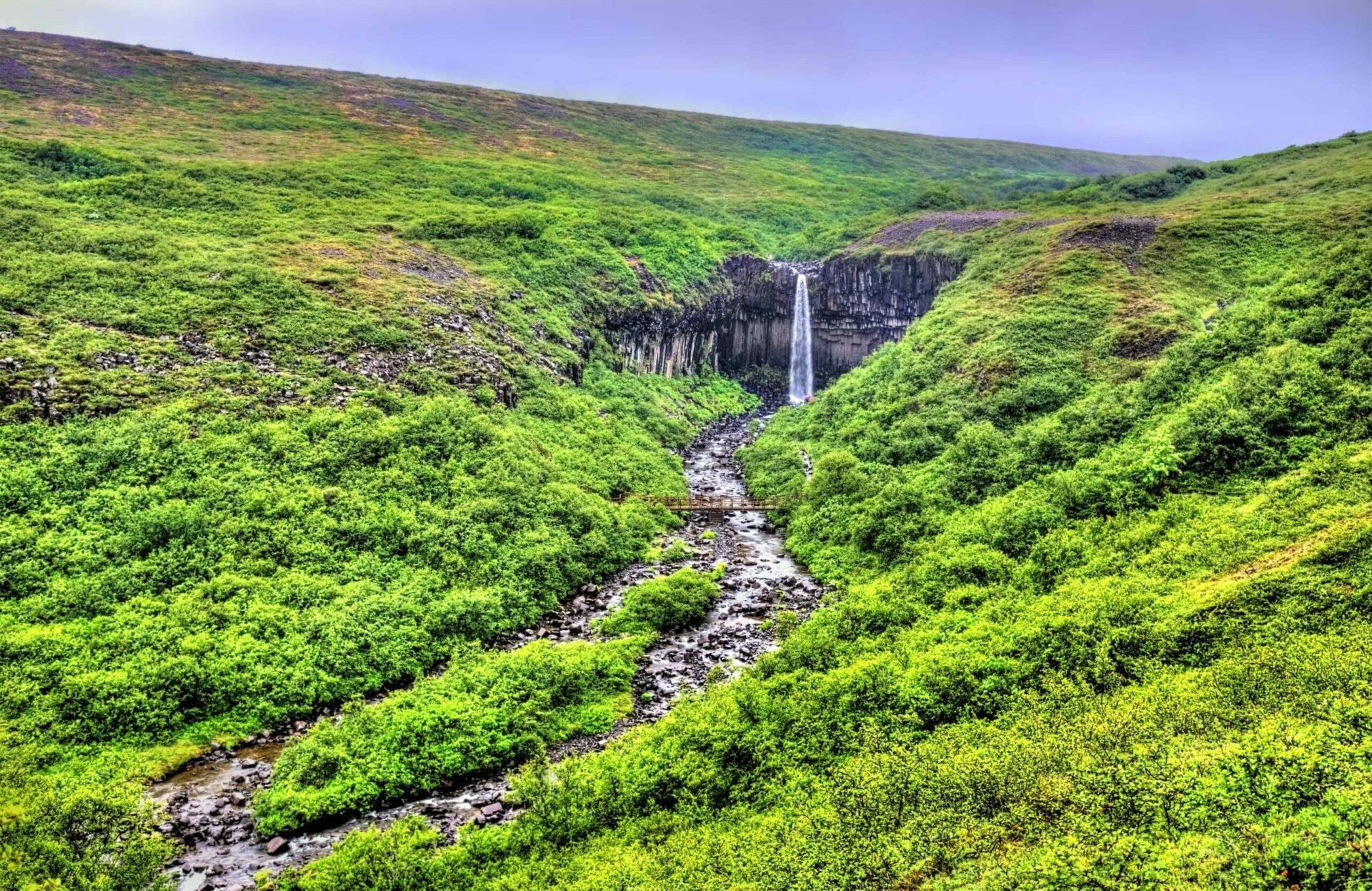 Svartifoss waterfall in Skaftafell National Park