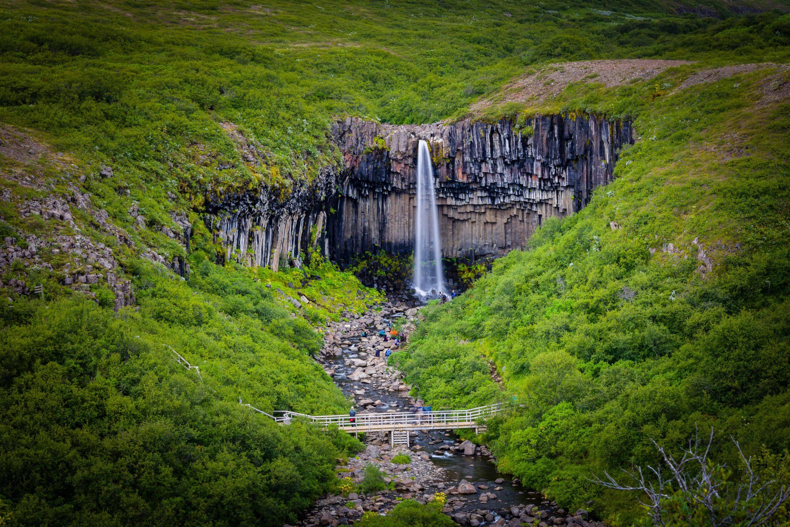 Svartifoss waterfall in Skaftafell Vatnajökull National Park in south Iceland