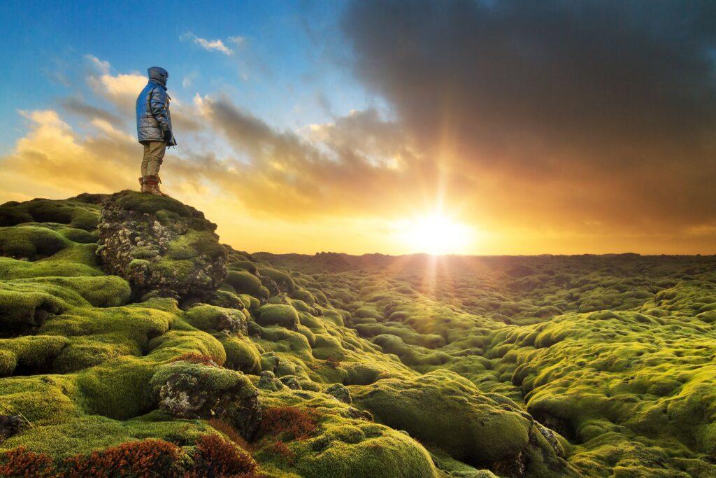 Eldhraun lava fields, south Iceland lava fields