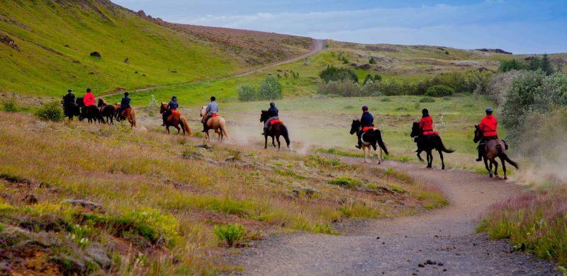 Reykjadalur valley horse riding