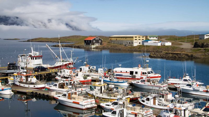 boats at the harbor in Djupivogur fishing village in east Iceland