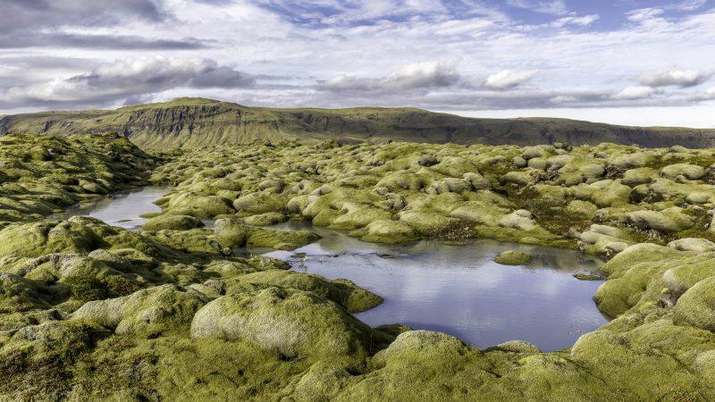 Eldhraun lava fields, lava fields in Iceland
