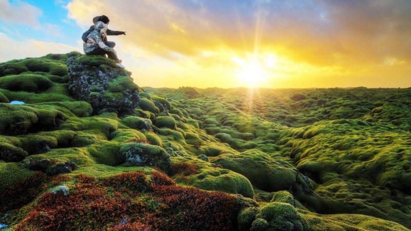 Honeymoon in Iceland, Eldhraun lava fields