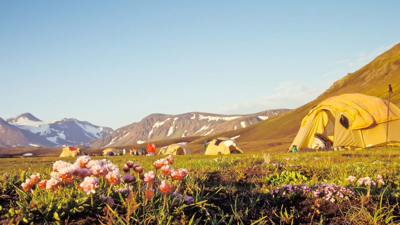 camping at Laugavegur hiking trail in the highlands of Iceland