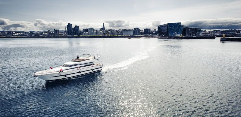 Luxury Whale Watching & Puffins, whale watching on a yacht in Iceland