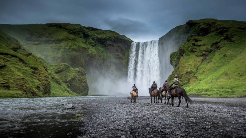 Icelandic horses in front of Skógafoss waterfall in south Iceland, horse riding in Iceland