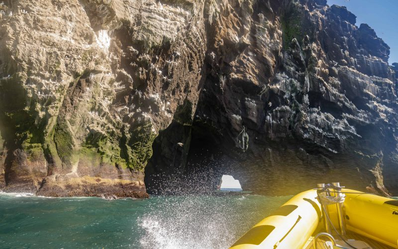 boat tour in Westman Islands