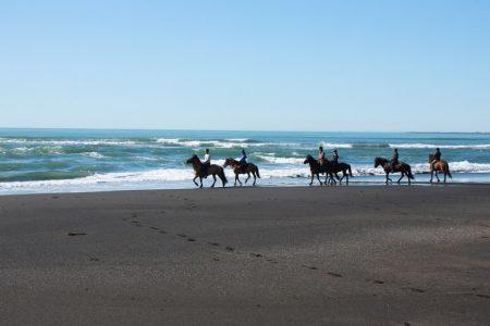 Black Beach Horse Riding tour in Iceland